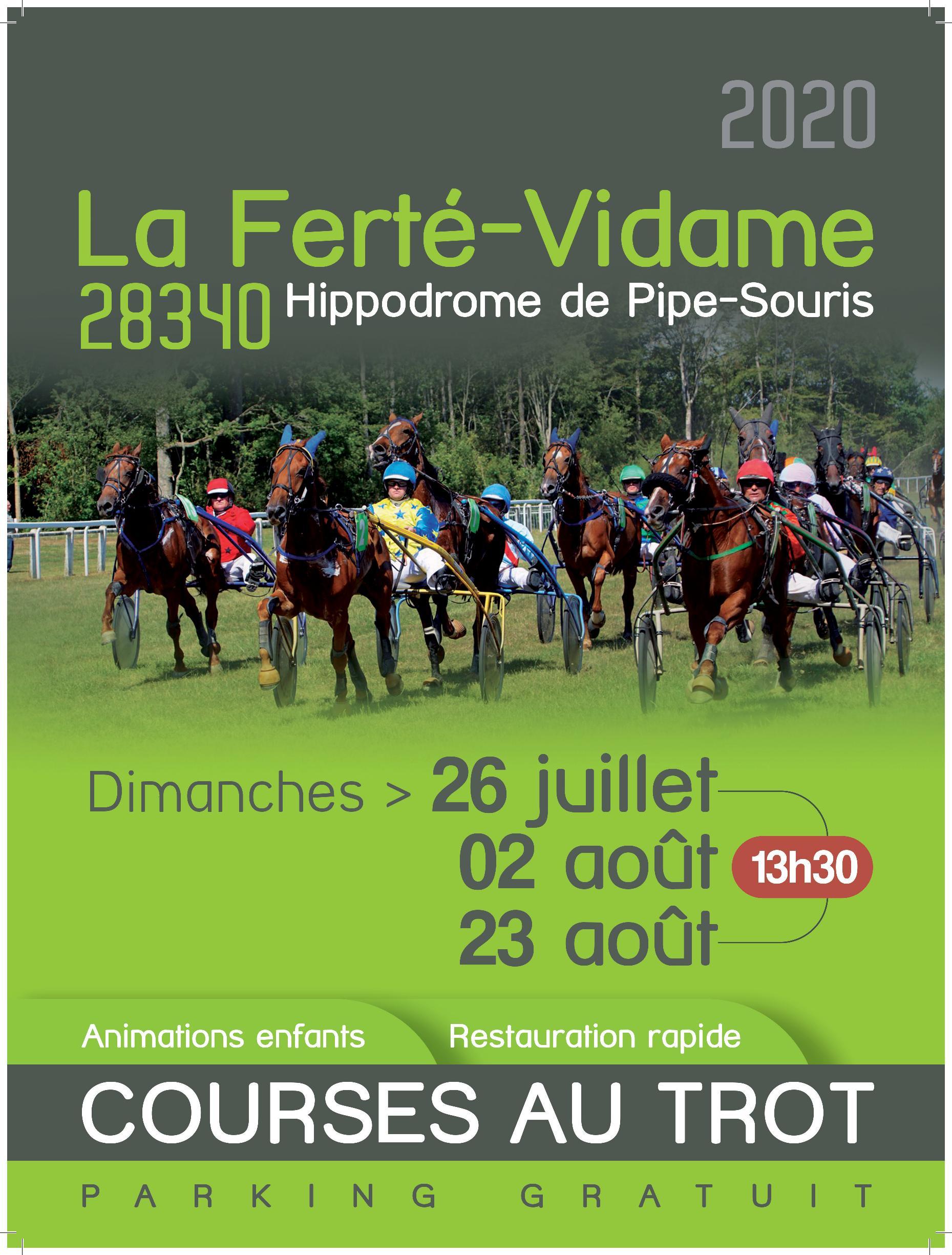 Réunions de courses sur l'hippodrome de la Ferté Vidame/Dreux