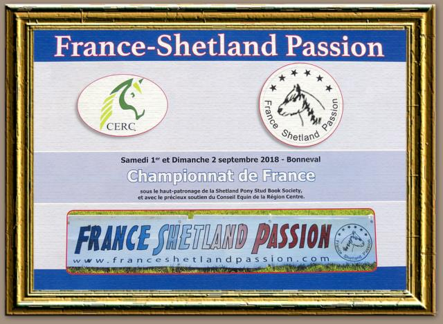 Résulats du Championnat de France de France Shetland Passion