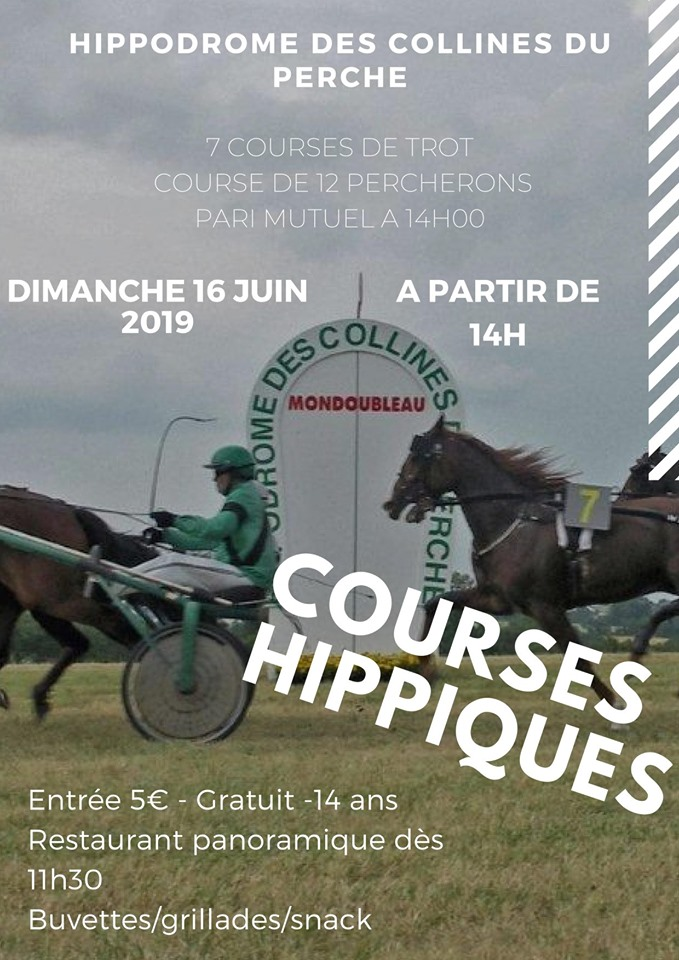 Course de Percherons à Mondoubleau le 16 juin