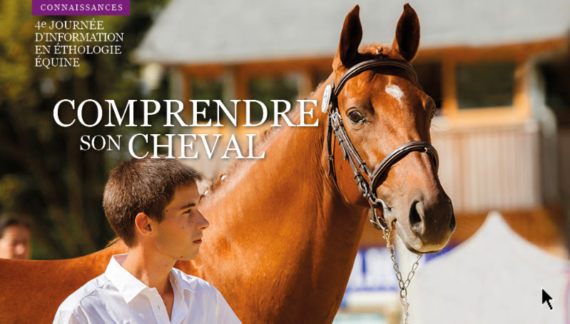 Comprendre son cheval : 4ème journée formation en éthologie équine - IFCE le 18 mai