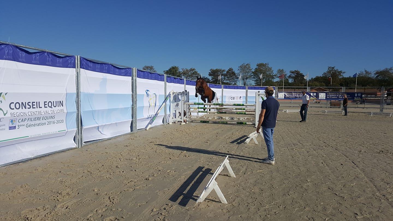 Concours régional modèle et allures chevaux et poneys de sport 3 ans à Lamotte Beuvron