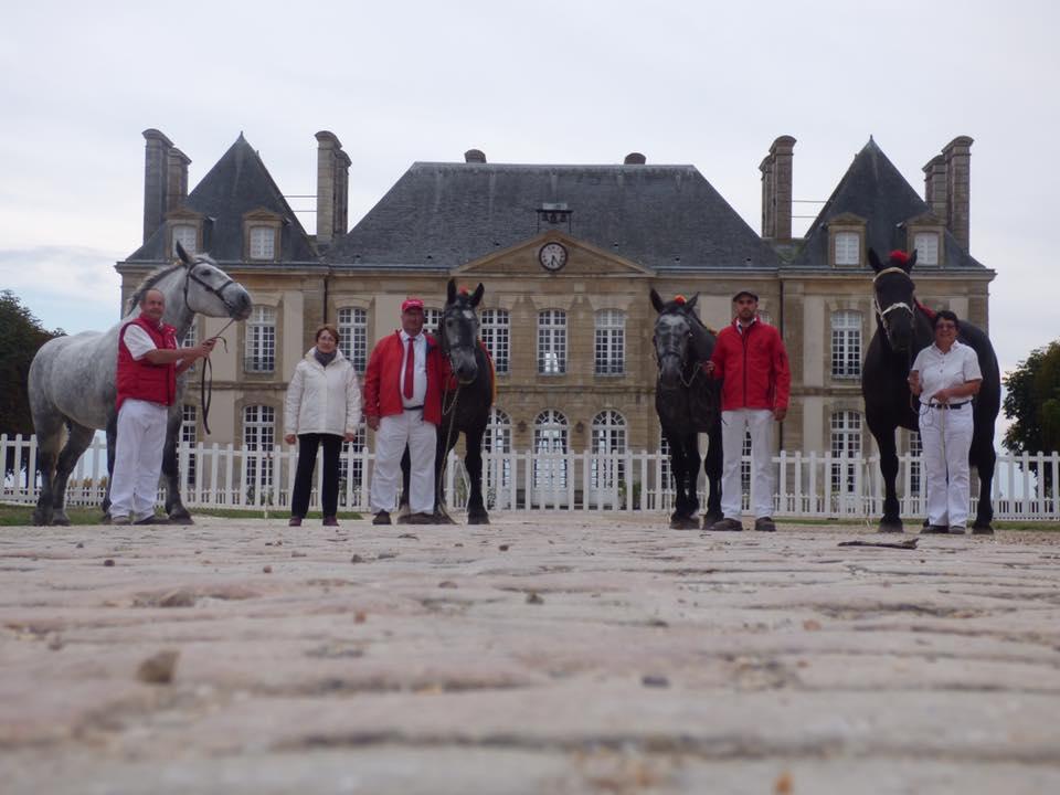 """""""Les éleveurs des chevaux de trait du Berry"""" au National Percheron au Hars du Pin"""