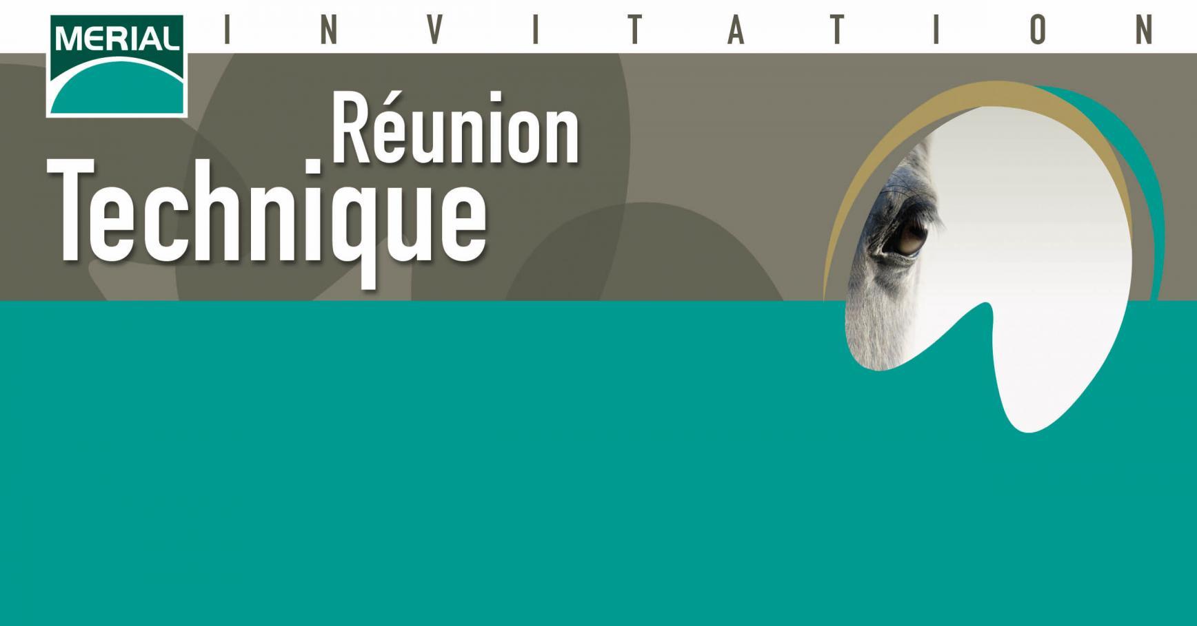 Réunion technique : la pathologie respiratoire équine et présentation d'étalons