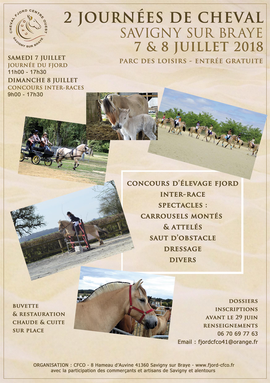 les 7 et 8 juillet à Savigny sur Braye - journées cheval organisées par le CFCO (cheval Fjord centre ouest)