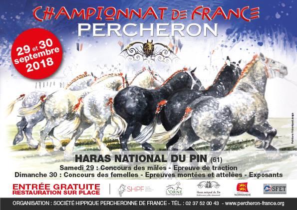 Championnat de France Percherons
