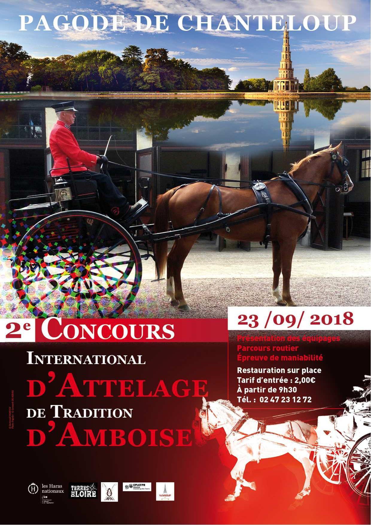 Concours d'attelages de tradition à Amboise